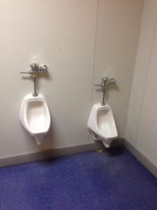 Skate Galxy Urinals